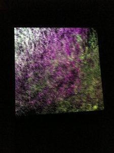 アーティストとサイエンティストの出会い:データで美を再構成する - 平川紀道 Datum
